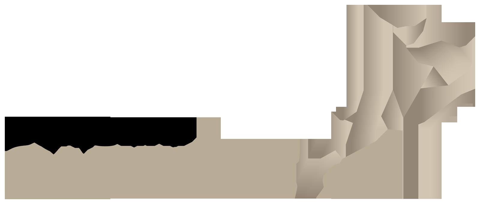 Gazelle-2017_rgb_transparent