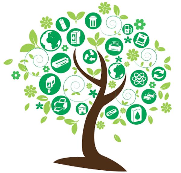 Miljø services